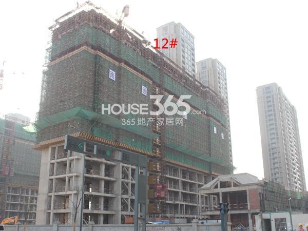绿城玉兰广场12#楼工程进度实景图(2014.11)