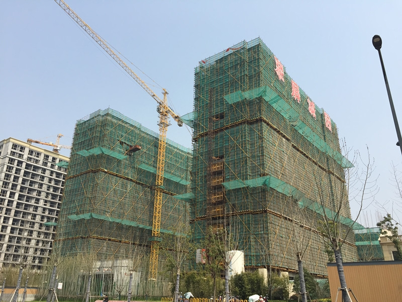 翠屏诚园最新楼栋进展(3.23)