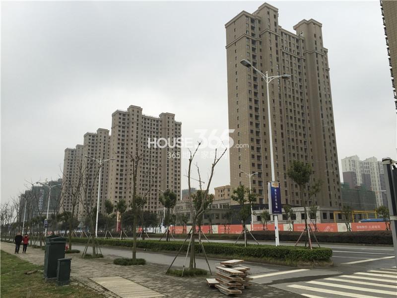 七里香项目实景图(2015.4.20)