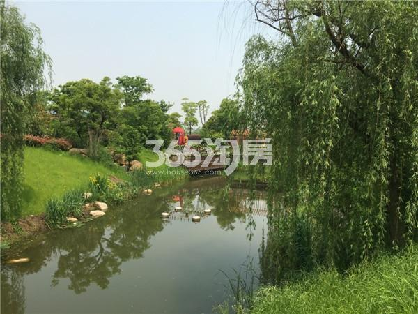 恒达星湖花海小区实景图(2016.4 摄)