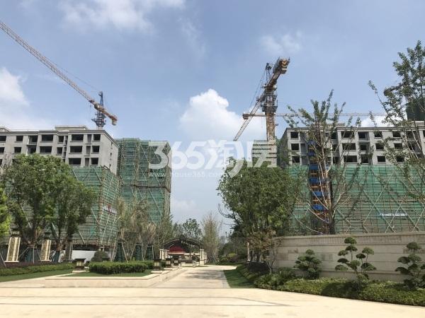 港利上城国际工地实景图(8.16)