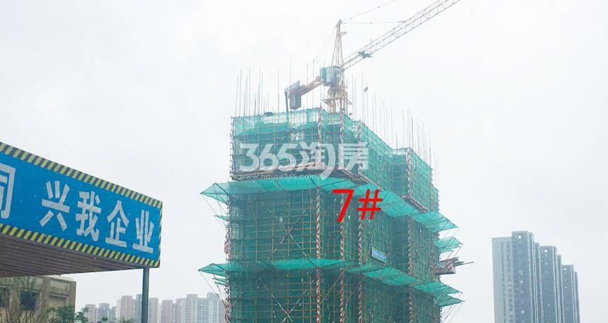 新城北宸紫郡7#工程进度实景图(9.4)